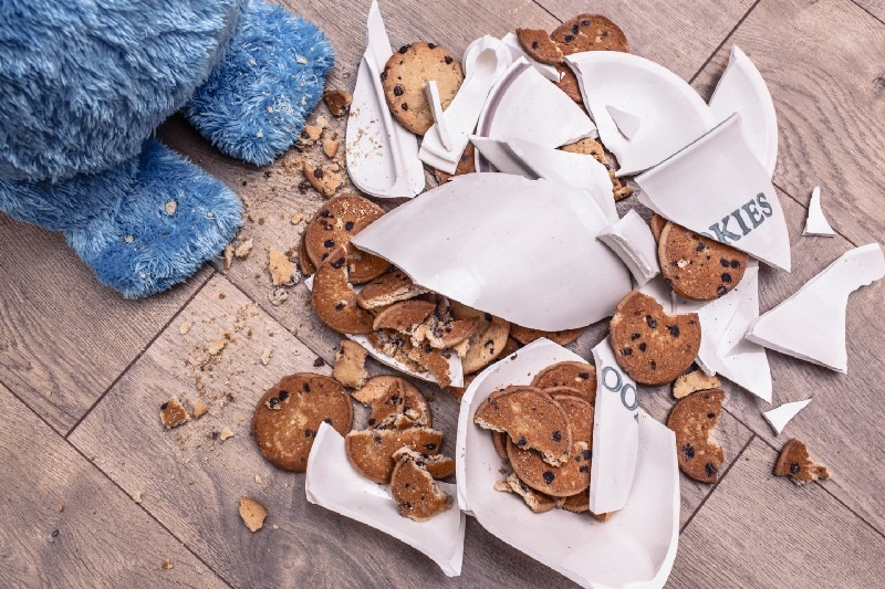 Cookie monster smashes plate of cookies