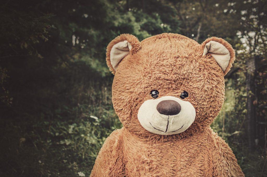 Teddy bear head and shoulders